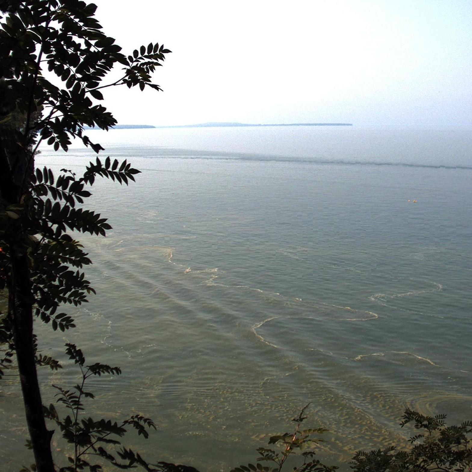 algae bloom in lake superior