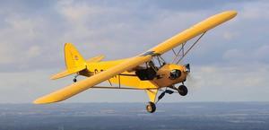 A Piper Cub plane