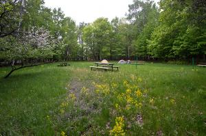 The new campground at Bagley Nature Area opened this summer.