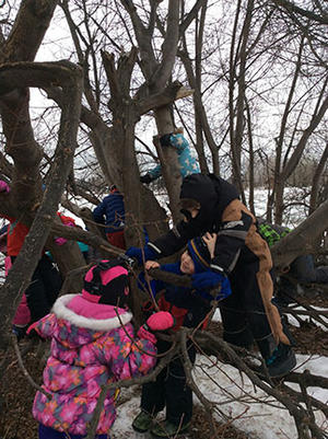 Kids in Duluth playing in a tree