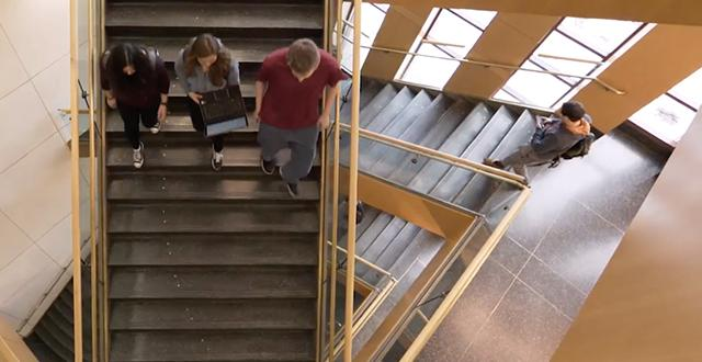 Students walking down library steps.