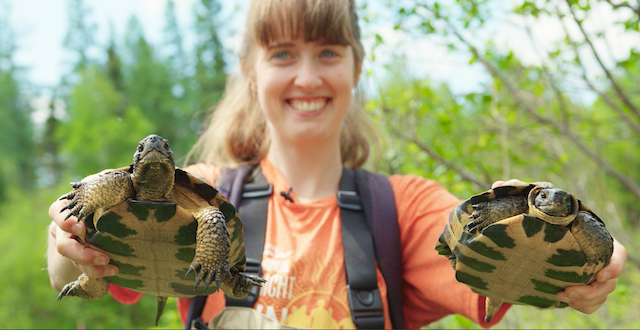 A student holding two turtles out in front of her.