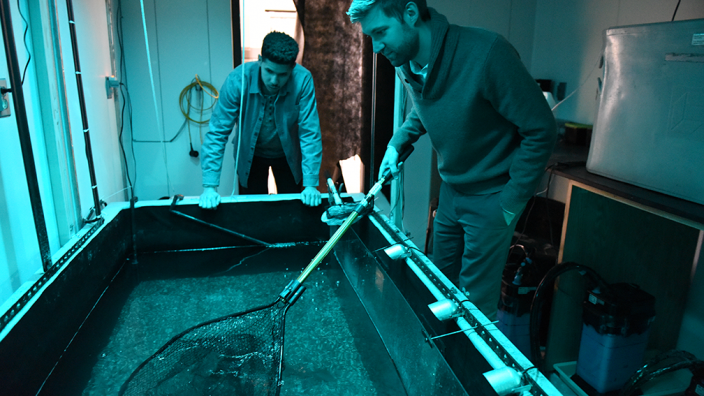 L.J. & Trevor Keyler (in front) are now focusing on a project that tests the distance siscowet lake trout can visually detect prey in tanks with different bottom surfaces.