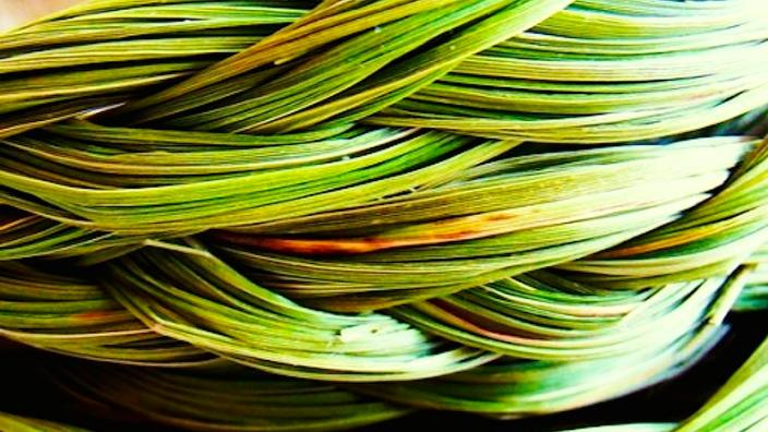 detail of a sweet-grass-braid