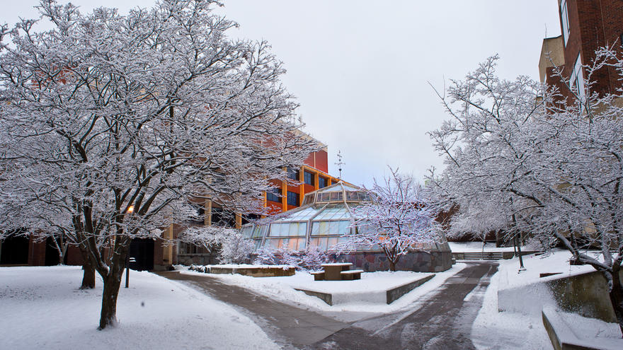 UMD Greenhouse surrounded by snow-covered trees