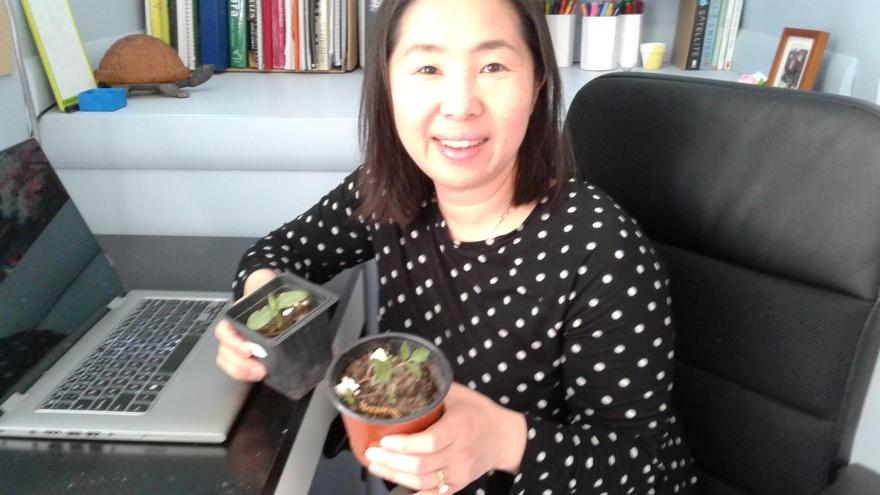 vNRRI Environmental Engineer Chan Lan Chun holding two plants