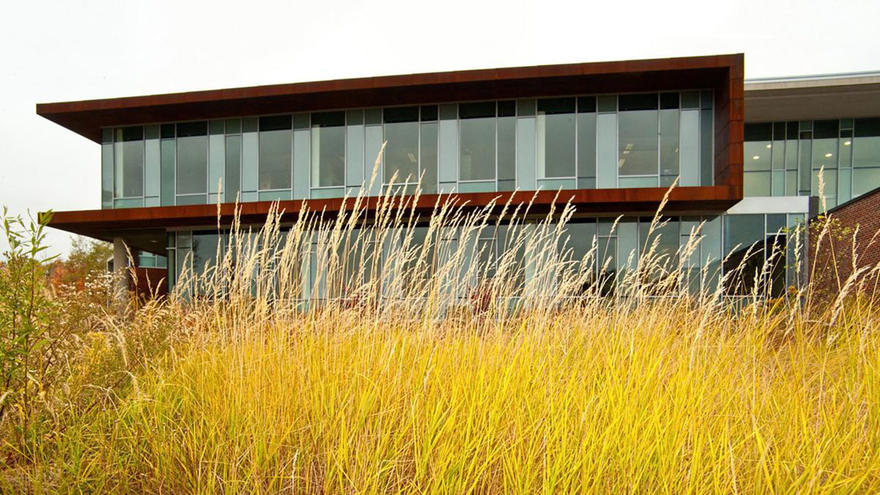 """UMD""""s Labovitz School of Business & Economics building with fall grass in foreground"""