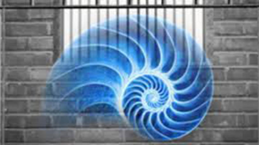 Graphic of blue nautilus shell in prison cell