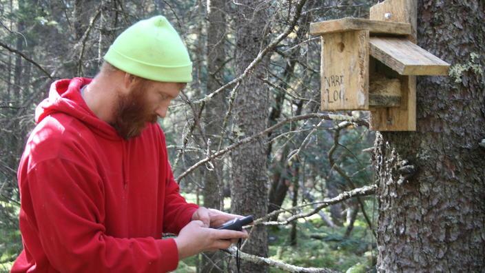NRRI researcher monitoring bird house