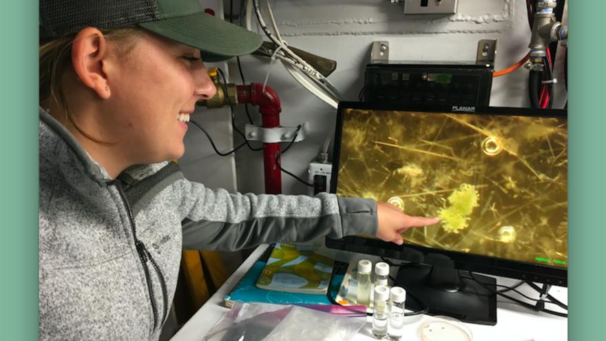 UMD LLO fresh water researcher Kaitlin Reinl views an enlargement of a Blue-green Algal bloom