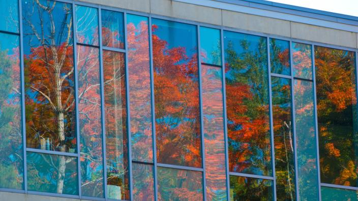 Red leaves are reflected on the LSBE building glass.