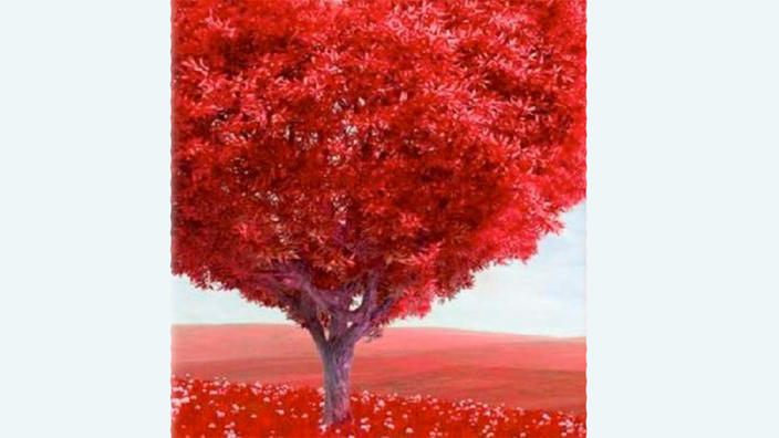 Illustration of tree with red bark and red leaves.