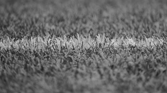 Black and white image of a football line