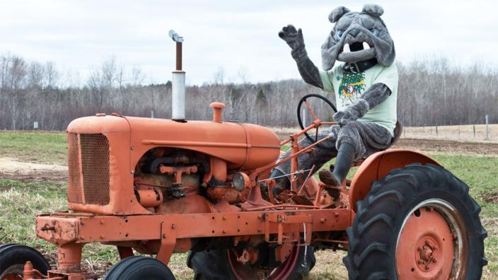 Champ on a tractor at the UMD Farm