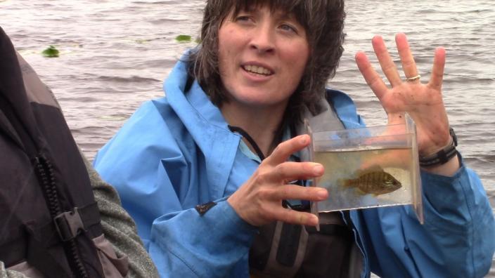 Valerie Brady taking samples in the St. Louis River
