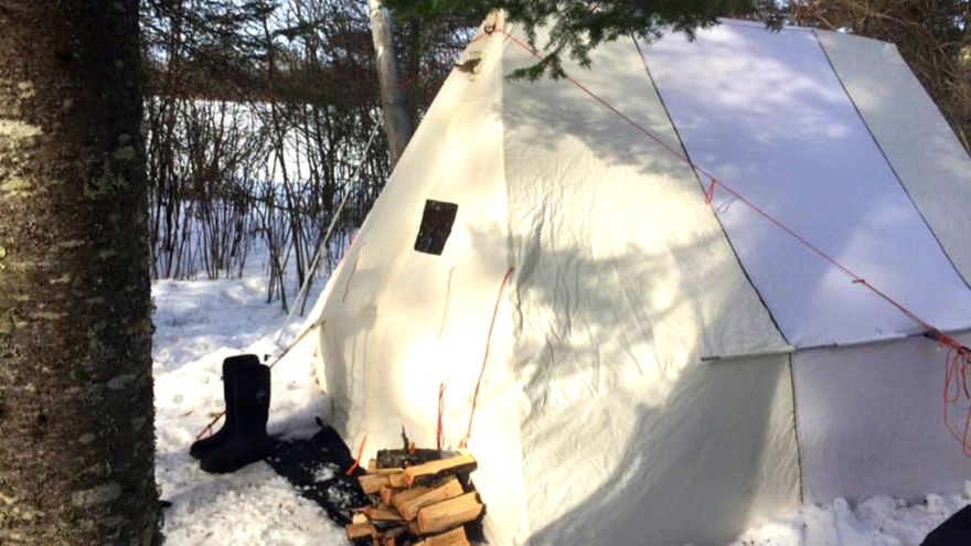 Tent in the winter woods with boggs outside of it