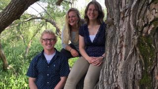Three students in a tree at Hartley Nature Center