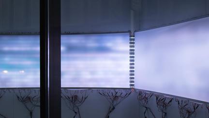 UMD SFA Associate Professor David Bowen's installation piece: purple screens with black branches below.