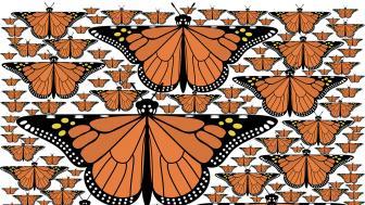 "UMD Professor Douglas Dunham's work ""Fractal Monarchs"""
