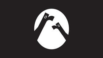 """Jake Ledson typography """"Birds"""""""