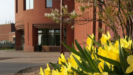 Outside the main entrance of the UMD Kathryn A. Martin Library with daffodils in foreground