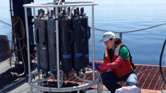 Elizabeth Austin-Minor check samples on the deck of the Blue Heron Research Vessel.