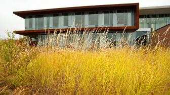 UMD's Labovitz School of Business & Economics with grasses