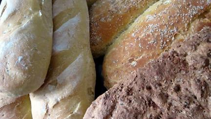 an image of bread
