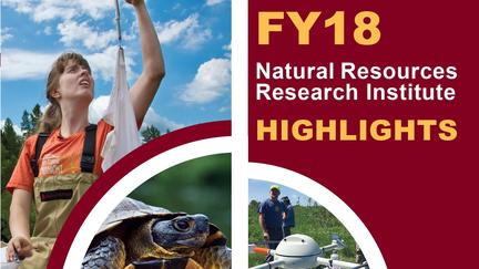 Cover of NRRI FY18 Annual Report