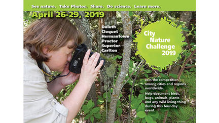 "Woman taking picture of tree, with the words ""See nature. Take photos. Share. Do science. Learn more. April 26-29, 2019, Duluth, Cloquet, Hermantown, Proctor, Superior, Carlton, City Nature Challenge 2019. Join the competition among cities and regions"