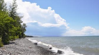 a lake shoreline