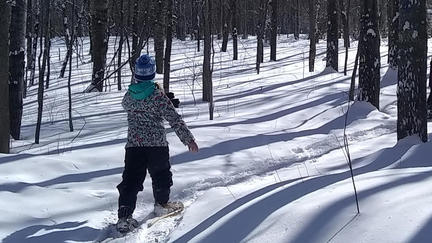 Child snowshoeing