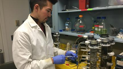 UMD student Daniel Takaki wearing a lab coat working in a lab.