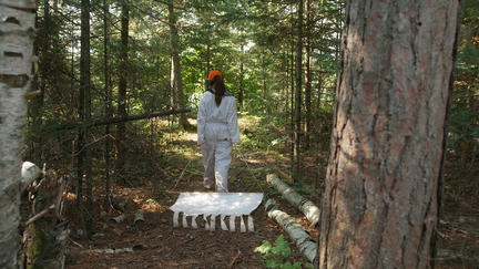 UMD student Raina Costello drags a drop cloth to collect ticks