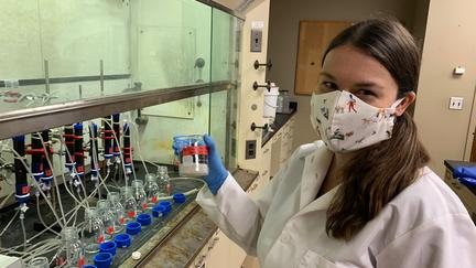 NRRI scientist Bridget Ulrich in a lab.