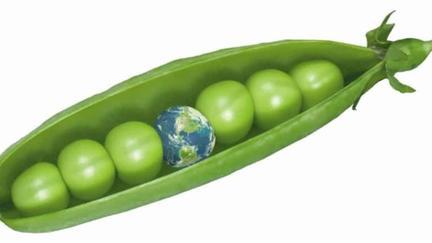 Peas in very green pod
