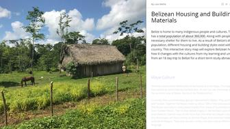 Photo of grass hut. Text: Belizean Housing & Building Materials