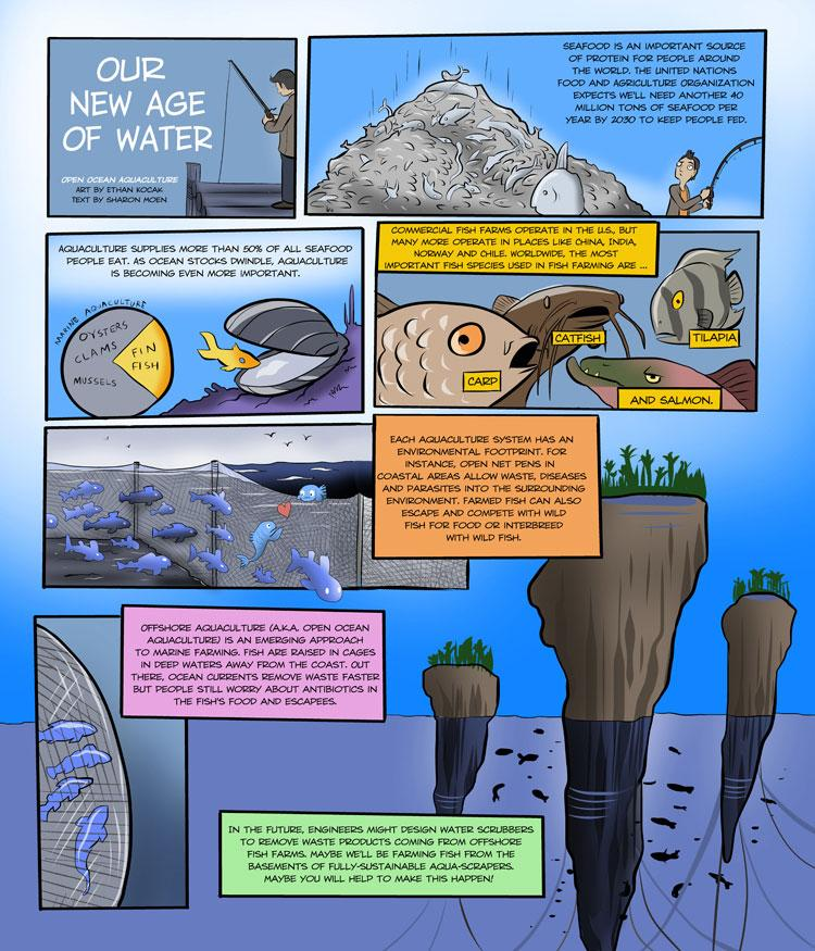 MN Sea Grant digital comic strip